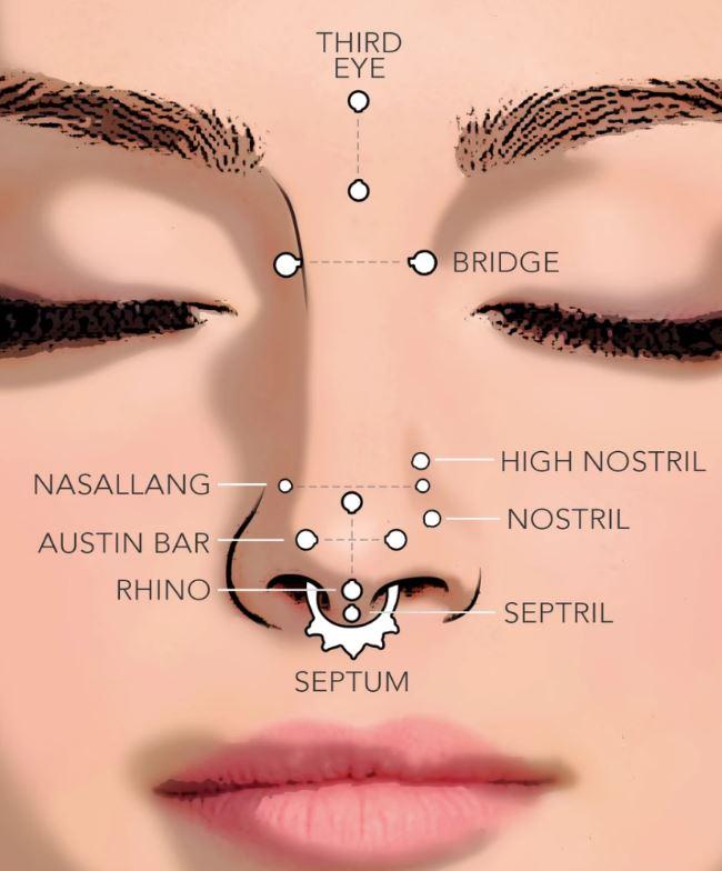 Jenis Menusuk Hidung & Panduan Perhiasan Hidung, tindik hidung